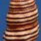 80305 Seashell Turrilatirus turritus 33 mm