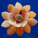 Gems Under the Sea 02243-02248 Sailors Valentine Cut shells- Bractechlamys vexillum-10, 1 oz