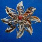 Gems Under the Sea 00635-39 Cut shells Sailors Valentine Strombus urceus-21, 1 oz