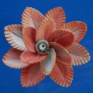 B693 Cut shells Sailors Valentine Mimachlamys sanguinea-05, 1 oz