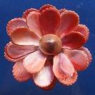 B246 Gems Under the Sea 87247 Cut shells- Mimachlamys sanguinea-09, 1 oz