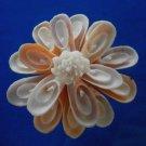 Gems Under the Sea 05311 Sailors Valentine Cut shells Conus voluminalis-02