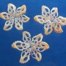 B278 20280 Sailors Valentine Cut shells- Drupella rugosa-01, 12 pcs