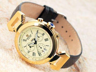 Steinhausen Swiss Design Watch (Gold) #TW 482 G