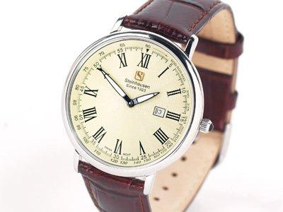 Steinhausen Dunn Horitzon Watch Silver Leatherband # TW 493 S