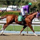 ** VICTOR ESPINOZA SIGNED PHOTO 8X10 RP ESPINOSA AUTOGRAPHED CALIFORNIA CHROME