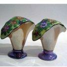 Fan Shaped Floral Vase Salt & Pepper Shakers