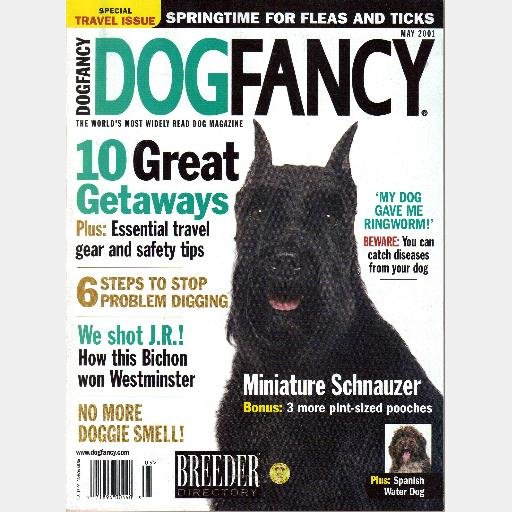 DOG FANCY May 2001 Magazine MINIATURE SCHNAUZER Spanish Water Dog, JR the BICHON FRISE