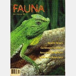 FAUNA January February 2001 Volume 2 No 1 Magazine Howard Gloyd KEPULAUTAN TOGIAN Great Fire Lizard