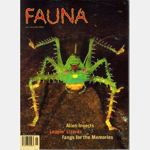 FAUNA March April 2001 Magazine Volume 2 Number 2 Lizards El Dorado KATYDIDS Pitviper