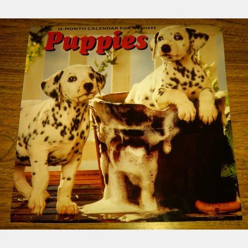 PUPPIES 1989 1999 Calendar Forget Me Not AMERICAN GREETINGS UPC 018100131500