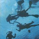 American Scientist Magazine September October 1977 Vol. 65 Scuba Divers Decompress Richard H Strauss