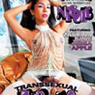 Trans-it volume 3