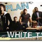 NEW PLAIN WHITE T'S -  24 X 36 MUSIC POSTER