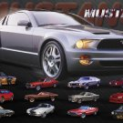 NEW MUSTANG EVOLUTION -  16 X 20  CAR POSTER