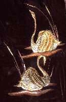 Copper Swans On Wood Wall Decor, circa 1960's