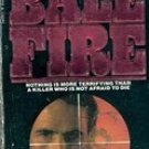 Bale Fire by Kenneth Goddard