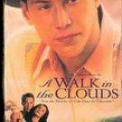 A Walk in The Clouds (VHS Movie) Keanu Reeves