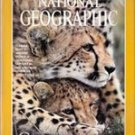 National Geographic, December 1999 (Cheetahs)