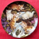 Kahla Kitten Expeditions Little Waterfall Plate 1997
