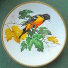 Baltimore Oriole Roger Tory Peterson Georges Boyer Fine Porcelain Limoges Plate 1981