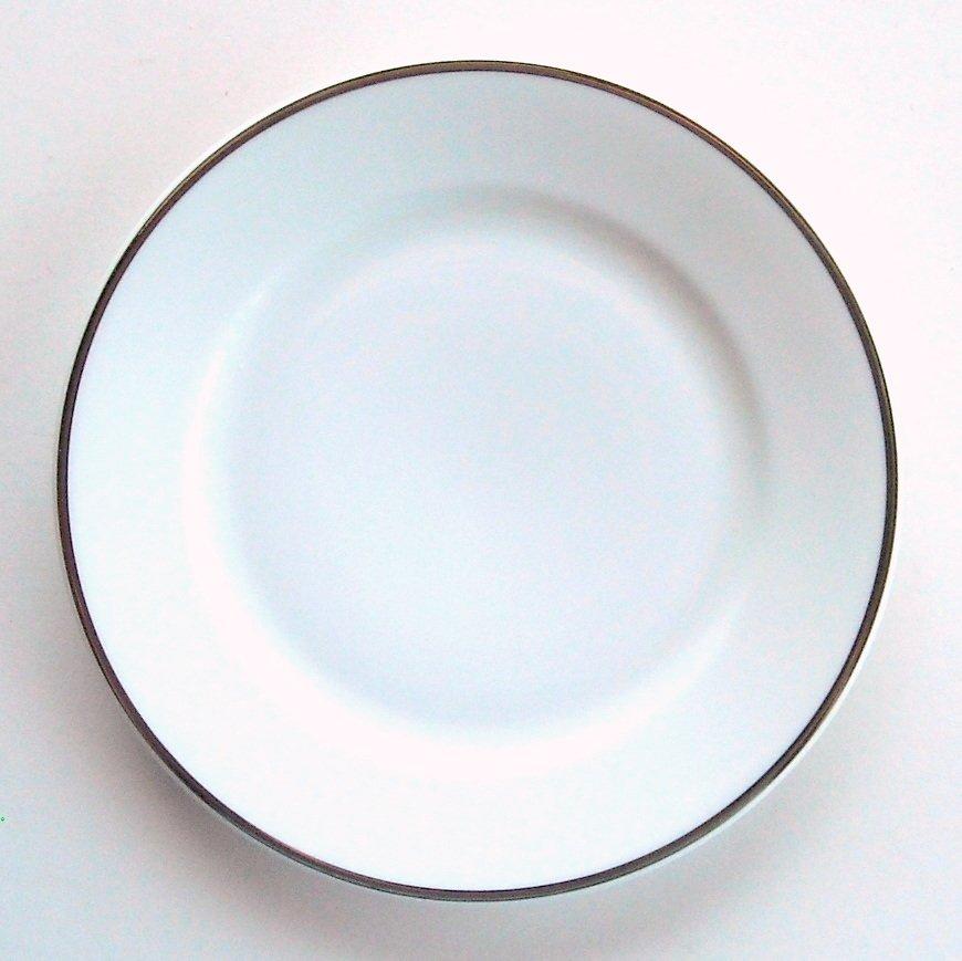 sc 1 st  CoastalAntiques - eCRATER & Rosenthal Continental China Dinner Plate Germany Pattern 3471 Platinum