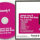 James Levy And The Blood Red Rose - Pray To Be Free -FULL PROMO- CD 2012
