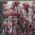 ARKESTRA ONE - ARKESTRA ONE CD  2002 Cosmic Sounds / 24HR POST