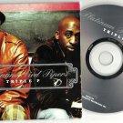 Platinum Pied Pipers : Triple P -RARE OFFICIAL ALBUM PROMO- (CD 2005) 24HR POST