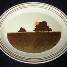 Royal Doulton LS 1031 Prairie Serving Platter