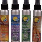 Aromatherapy Air Freshener Spice Blend- 4 fl. oz