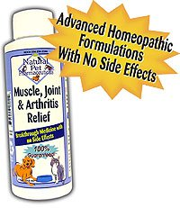 MUSCLE, JOINT & ARTHRITIS RELIEVER -4 oz.