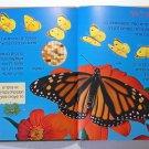 """KIDS BOOK - """"Butterflies"""" , Hebrew Language"""