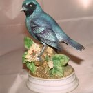 SWALLOW TANAGER - Classic Gallery Collection - Hand Painted Porcelain