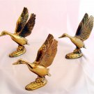 DUCKS - Brass - w/ Outstretched Wings (3 pcs) AWESOME!