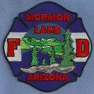 Mormon Lakes Arizona Fire Patch