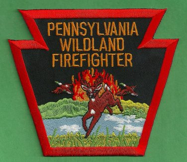 Pennsylvania State Wildland Firefighter Fire Patch
