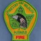 Hawaii Department Of Forestry & Wildlife Fire Patch