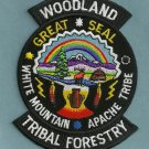 White Mountain Apache Arizona Woodland  Tribal Forestry Patch
