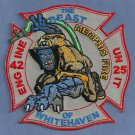 Memphis Fire Department Engine Company 42 Patch