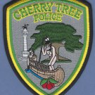 Cherry Tree Pennsylvania Police Patch