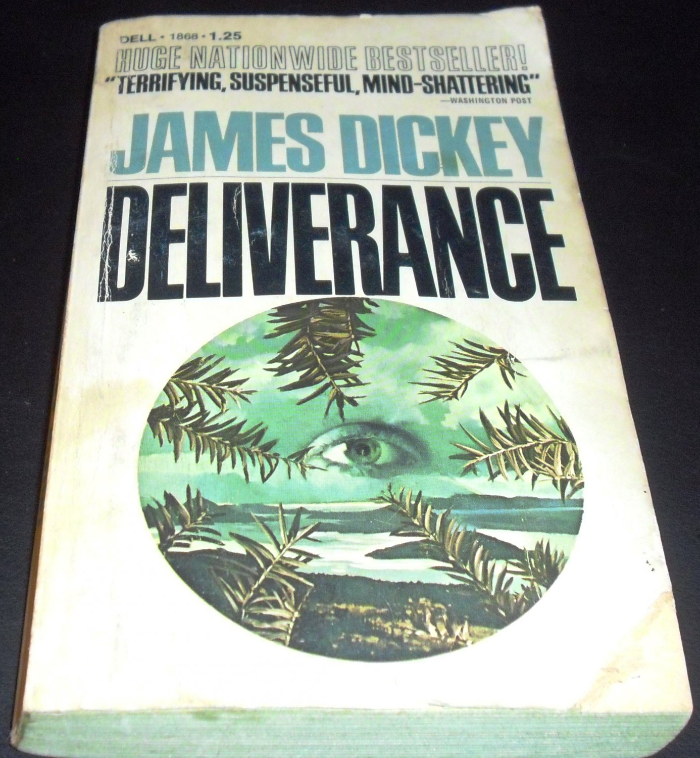 a literary analysis of deliverance by james dickey