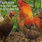 Country Life Magazine September 30, 2009 (Bantams How they can peck up your life)