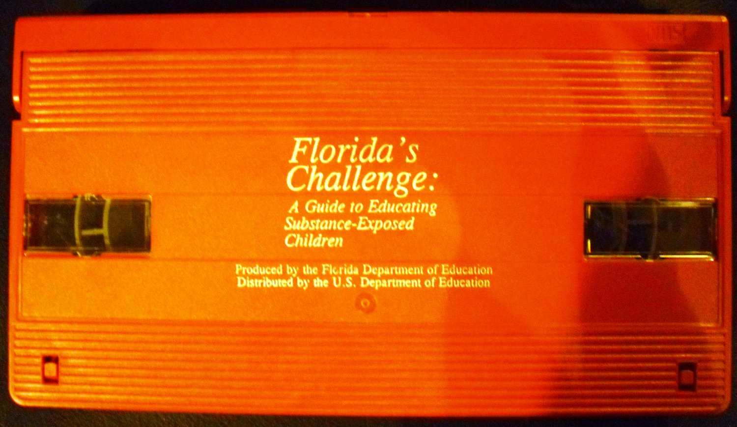 Florida's Challenge: A Guide to Educating Substance-Exposed Children (VHS)
