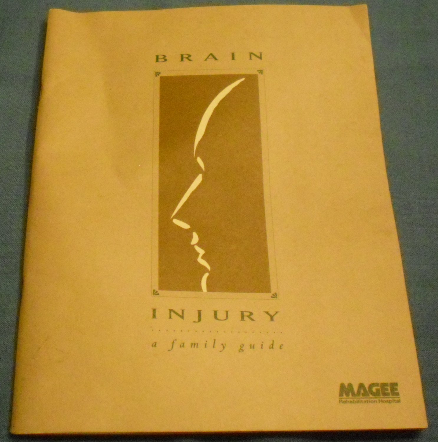 Brain Injury: A Family Guide by Magee Rehabilitation Hospital