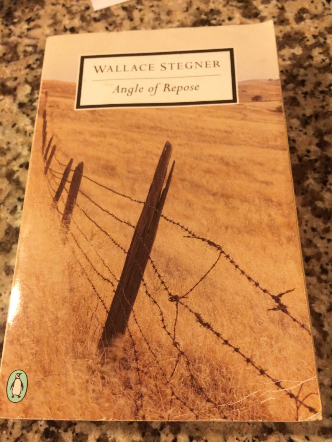 Penguin Twentieth-Century Classics: Angle of Repose by Wallace Stegner (2000, Paperback)