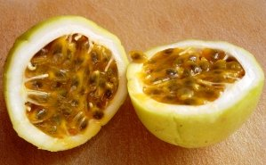 Maracuya / Passionfruit