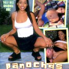 Viva Latinas - Panochas Listas 5 hr Adult DVD