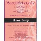 Guava Berry Fragrant Wax Cubes