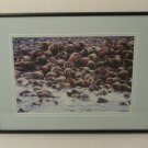 Custom Made Framed Matted Photograph Walrus 15in x 11in x 1in  Vintage  Glass Paper